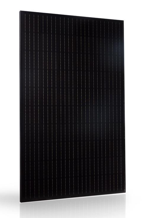 Pannello Solare Fotovoltaico Trienergia 60 celle MWT