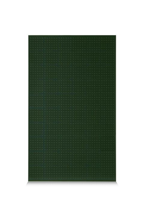 Green PV Module Trienergia 60 cells MWT STAR